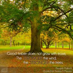 Good timber does not grow with ease. The stronger the wind, the stronger the trees. #ldsconf