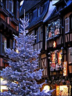 Christmas in Colmar, Alsace, France ~ home to one of the most beautiful Christmas markets in Europe.