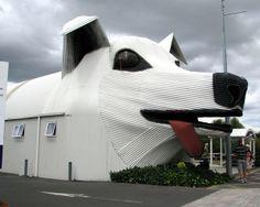 Sheepdog building (Tirau, Waikato, New Zealand) architectur, newzealand, buildings, dog houses, sheep, landscape designs, unusual houses, big dogs, new zealand