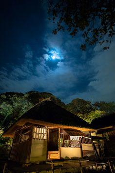 Kasa-tei tea house at Kodai-ji #kyoto #japan