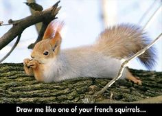 Funny Pictures Of The Day - 105 Pics