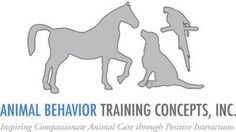 Midday Fix - Dog Training Tips