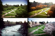 The Quad during all four seasons!