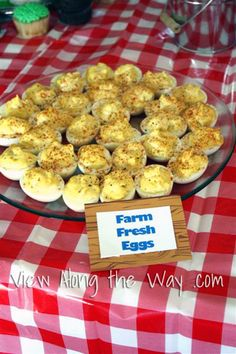 Party Theme Ideas: Barnyard Farm First Birthday Inspiration | * View Along the Way *