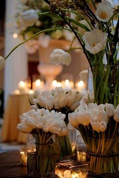 White tulips arranged in a square glass vase.