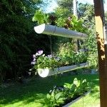 Gutter Garden. You can also mount these to a fence or wall.  Way cool idea!!!