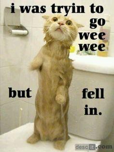 Hope u got a shower... I did :)