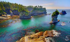 Washington state coast Sea Stacks Olympic National Park