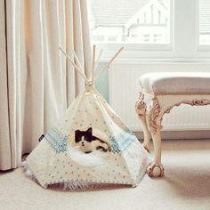Teepee pet bed!! cats, cat teepee, cat tipi, anim, furs, pet bed, homes, kitty, kitti teepe