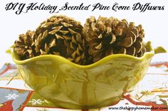 DIY Holiday Scented Pine Cone Diffusers