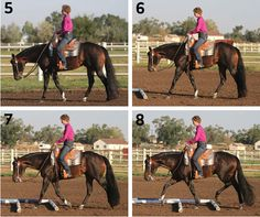 Extended Trot | Horse&Rider
