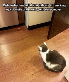 I'll Be Watching You Red Dot