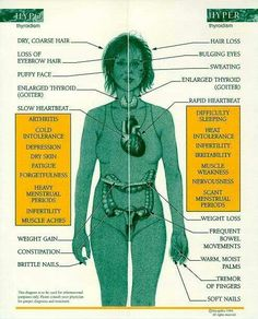 Thyroid symptoms for hypo and hyper