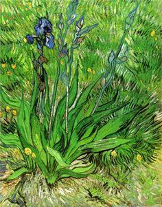 Vincent van Gogh, El lirio vangogh, vans, 1889, food, flower paintings, irises, artist, vincent van gogh, diy light