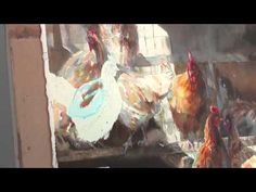 ▶ Watercolor Portraits of the South with Mary Whyte: Preview - YouTube