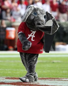 """Alabama and Auburn played in 1907, but did not meet again until 1948.    In the last meeting before the hiatus, Hugh Roberts, editor of the Birmingham Age-Herald, described the Alabama team as """"the Crimson Tide.""""    Prior to this, they had been known as """"Crimson White"""" or """"Thin Red Line.""""    After this, the name gained popularity until it was eventually adopted as the official nickname of the school's athletic teams."""