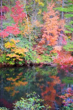 Fall reflections in the Pisgah National Forest in the NC mountains nc mountain