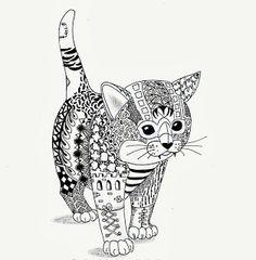 Kitten van Ben Kwok