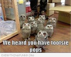 We heard you had tootsie pops