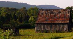 This Barn is located on U.S. Highway 11 in Dekalb County, Alabama