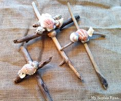 driftwood and shell crosses