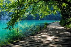 water, walks, walkways, nature, color, lakes, path, place, summer days