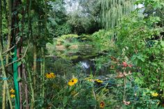 Monet's inspiration: Giverny, France, shot by Shay Davidson