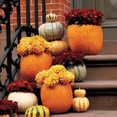 Martha Stewart pumpkin cachepots