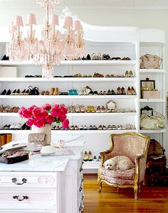A more glamorous shoe storage approach...complete with chandelier and fluffy white pup.