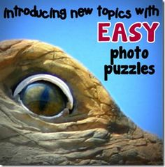 Introduce new topics with photo puzzles to build students' engagement.
