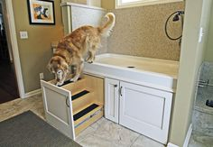 Great idea to have pull out steps underneath the dog bath!
