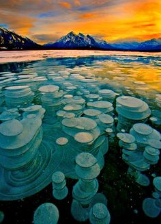 Frozen Bubbles, Abraham Lake, Alberta, Canada    Bubbles trapped and frozen under a thick layer of ice creating a glass type feel to the frozen lake.    Image Credit : Paul Christian Bowman