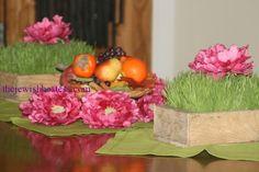 ... shevat inspiration b shevat centerpieces bishvat decor tables ideas tu