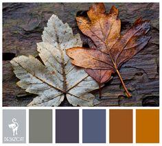 Winter Leaves: Grey, Slate, Blue, Brown, Beige - Colour Inspiration Pallet