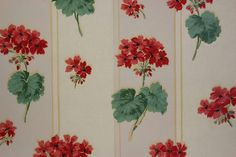 This roll of vintage wallpaper has bright red geraniums on a white background.