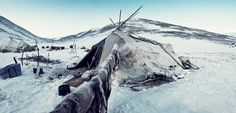 For at least a few hundred years, the coneshaped yaranga has been thetraditional home of Chukchi reindeer herders. It takes about 80reindeer skins to build a yaranga.