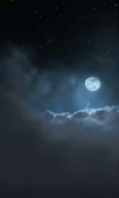 """""""It is a beautiful and delightful sight to behold the body of the Moon"""" -Galileo Galilei"""