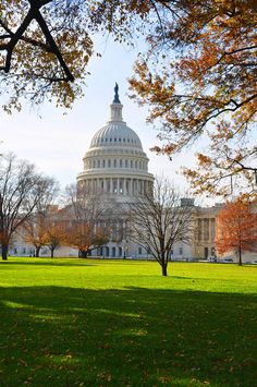 Capitol Hill Building - Washington DC