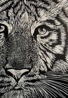 Tiger Linocut on Japanese Kozuke paper (44gsm white) by Rowanne Anderson http://www.etsy.com/uk/people/Rowanne?ref=pr_profile http://www.rowanneanderson.com/ Tags: Linocut, Cut, Print, Linoleum, Lino, Carving, Block, Woodcut, Helen Elstone, Animals, Tiger