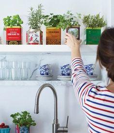 plant, indoor herbs, growing herbs, vintag tin, kitchen herbs, herbs garden, old tins, decoration kitchen, tea tin