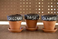 How adorable are these chalkboard painted herb pots?