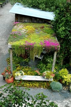 Amazing green roof