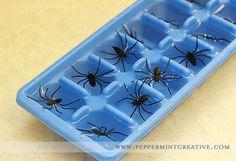 spider-ice-cube-02.jpg