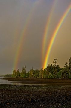 I think there is actually five rainbows. Amazing!