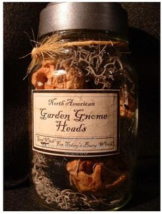 garden gnome heads specimen jar via scienceblogs