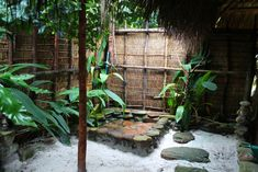 The paradise island of Koh Rong, Cambodia. The outdoor shower in our beach bungalow.