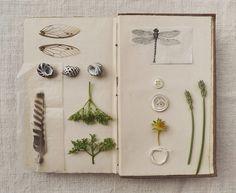 beautiful nature journal