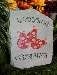 Be careful! Ladybirds crossing #homesfornature