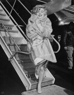 Marilyn mink coat icon, peopl, marilyn monroe, normajean, furs, beauti, norma jean, marilynmonro, coat