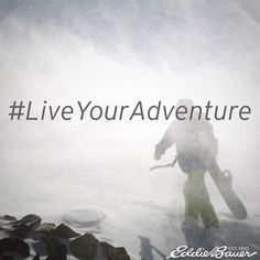 #LiveYourAdventure #Inspiration #Quote #meme